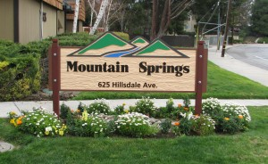 Custom High Density Monument - Mountain Springs Mobile Park